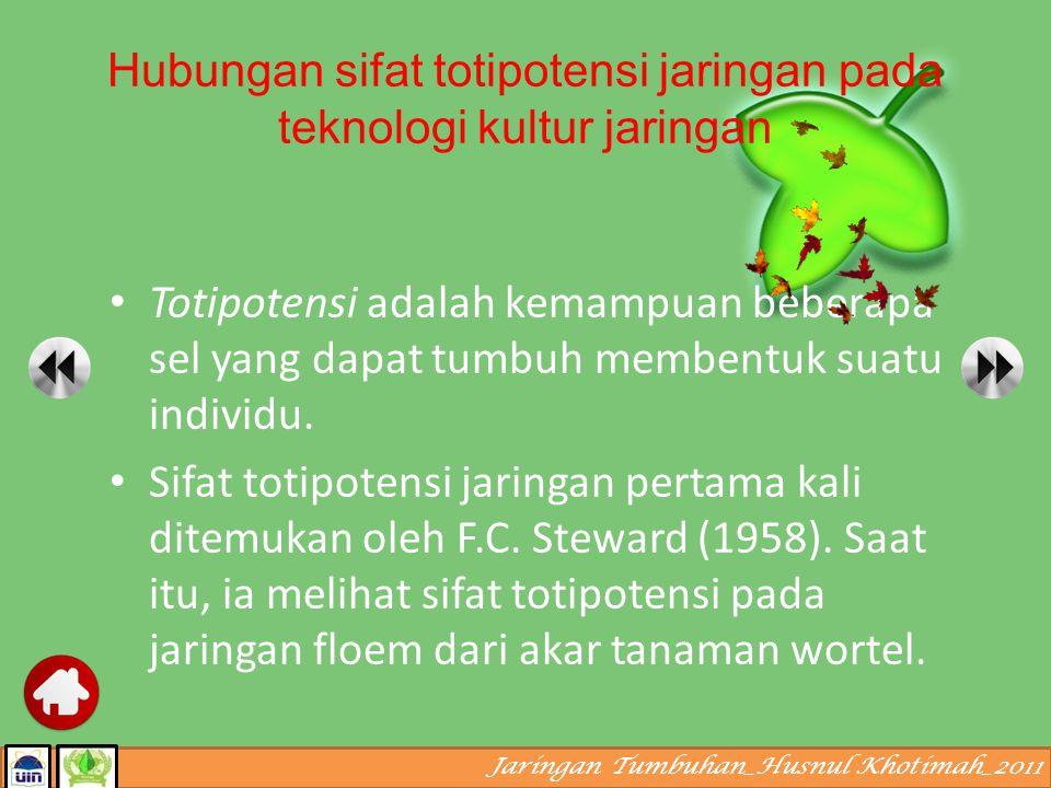 Jaringan Tumbuhan_Husnul Khotimah_2011 Daun Epidermis Parenkim/Mesofil Jaringan Pembuluh