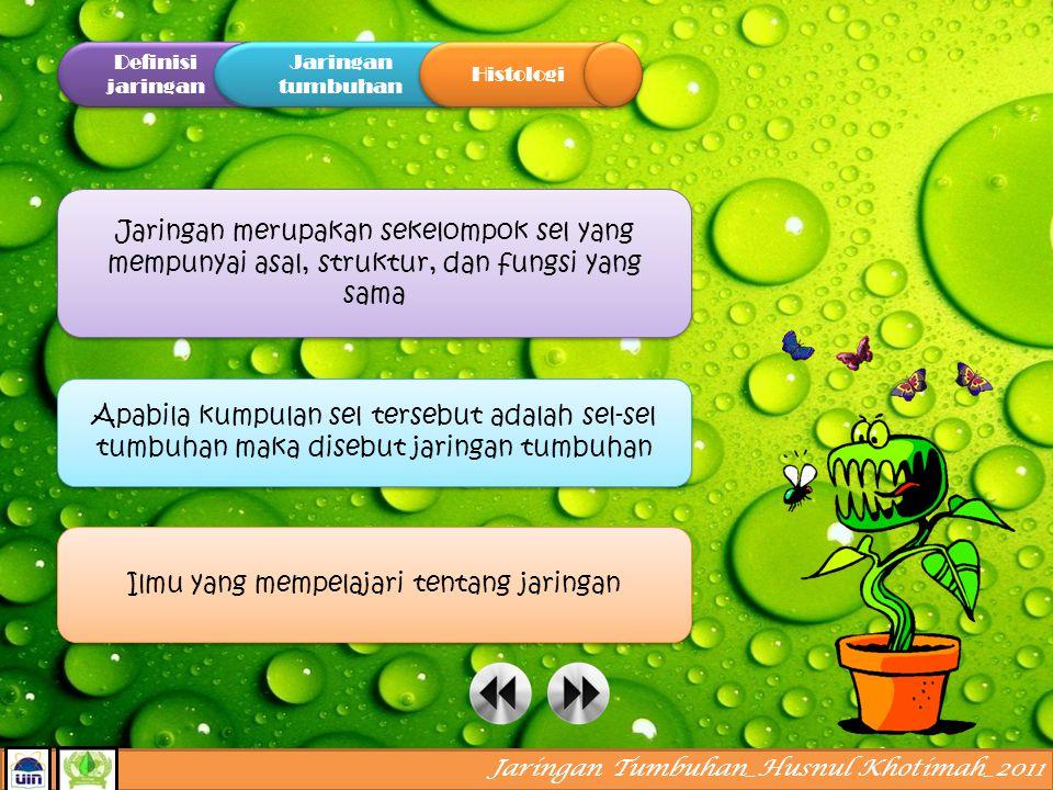 A ssalamualaikum.. tahukah kamu jaringan apa saja yang menyusun tubuh tumbuhan? ayo kita pelajari bersama..