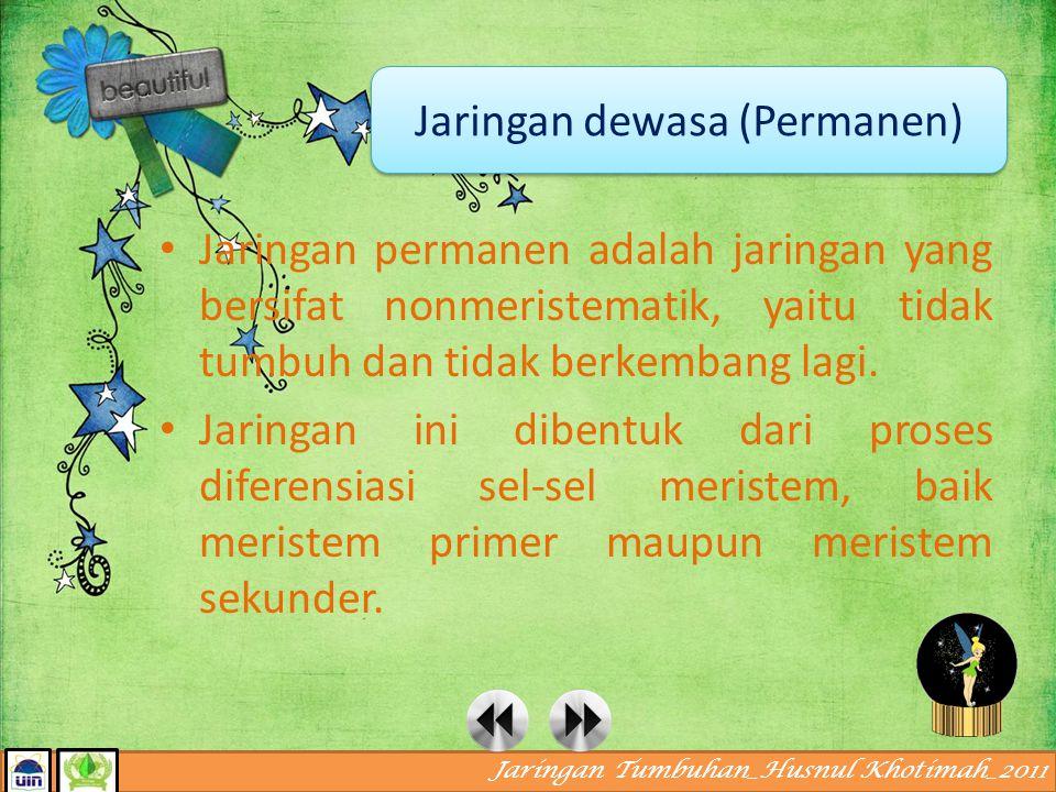 Jaringan Tumbuhan_Husnul Khotimah_2011 Jaringan meristem pada akar