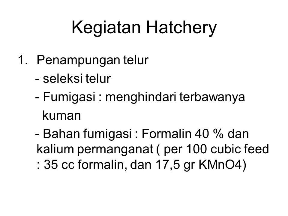 Kegiatan Hatchery 1.Penampungan telur - seleksi telur - Fumigasi : menghindari terbawanya kuman - Bahan fumigasi : Formalin 40 % dan kalium permangana