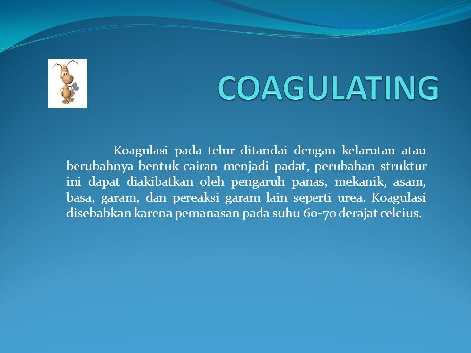 COAGULATING FOAMING EMULSIFYING CONTRIBUTING NUTRIENT COLORING INGREDIENTS FLAVOURING INGREDIENTS