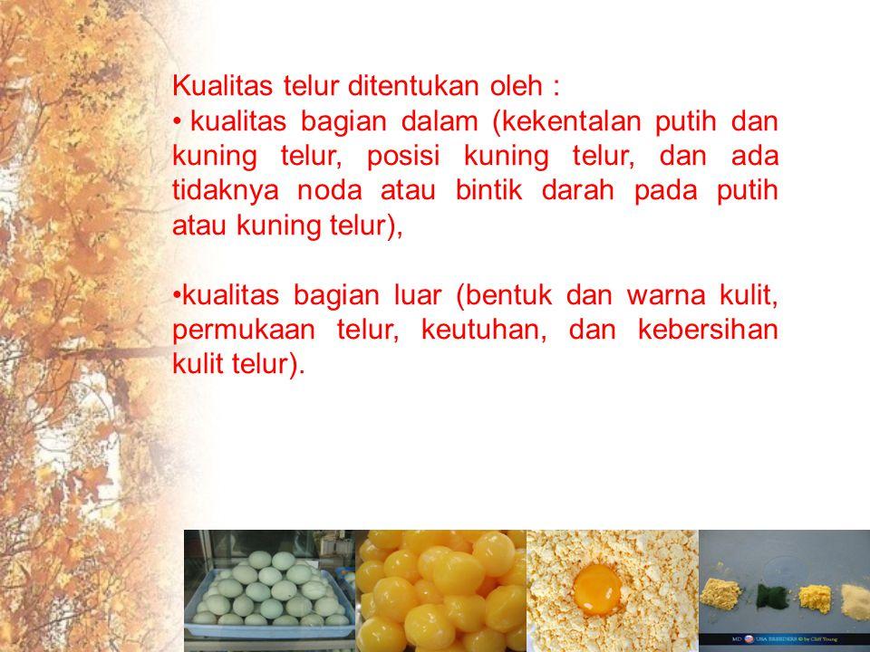 Kualitas telur ditentukan oleh : kualitas bagian dalam (kekentalan putih dan kuning telur, posisi kuning telur, dan ada tidaknya noda atau bintik darah pada putih atau kuning telur), kualitas bagian luar (bentuk dan warna kulit, permukaan telur, keutuhan, dan kebersihan kulit telur).