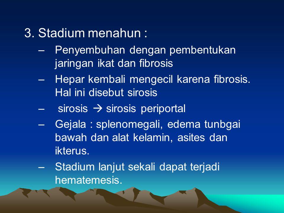 3. Stadium menahun : –Penyembuhan dengan pembentukan jaringan ikat dan fibrosis –Hepar kembali mengecil karena fibrosis. Hal ini disebut sirosis – sir