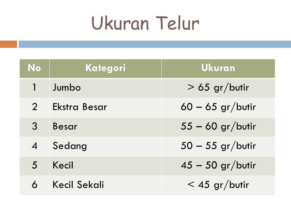 Ukuran Telur NoKategoriUkuran 1Jumbo> 65 gr/butir 2Ekstra Besar60 – 65 gr/butir 3Besar55 – 60 gr/butir 4Sedang50 – 55 gr/butir 5Kecil45 – 50 gr/butir