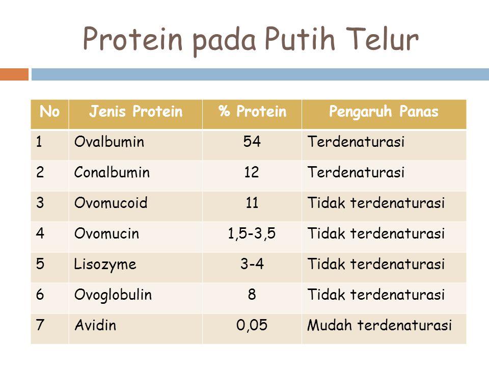 Protein pada Putih Telur NoJenis Protein% ProteinPengaruh Panas 1Ovalbumin54Terdenaturasi 2Conalbumin12Terdenaturasi 3Ovomucoid11Tidak terdenaturasi 4