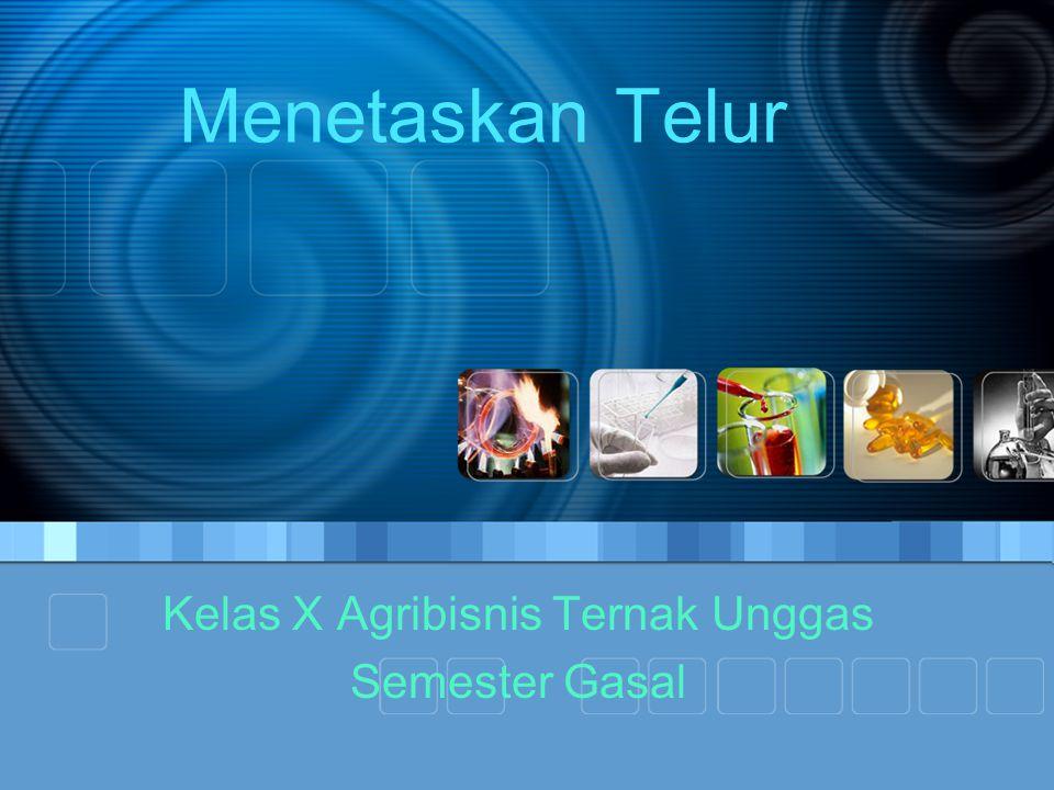 Menetaskan Telur Kelas X Agribisnis Ternak Unggas Semester Gasal