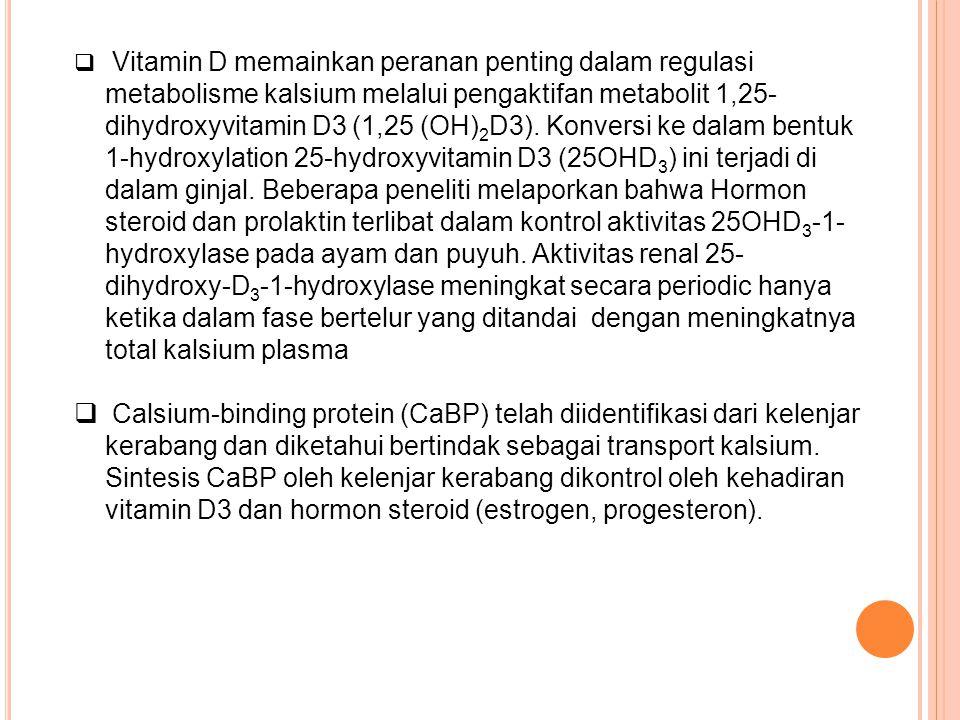  Vitamin D memainkan peranan penting dalam regulasi metabolisme kalsium melalui pengaktifan metabolit 1,25- dihydroxyvitamin D3 (1,25 (OH) 2 D3). Kon