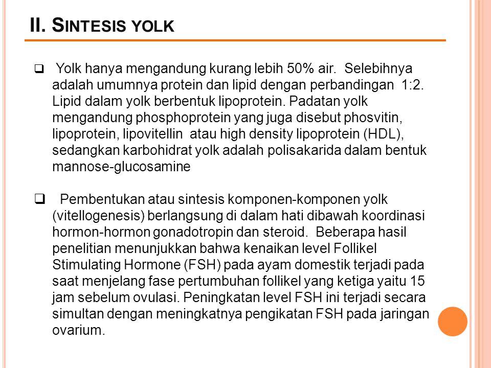 II. S INTESIS YOLK  Yolk hanya mengandung kurang lebih 50% air. Selebihnya adalah umumnya protein dan lipid dengan perbandingan 1:2. Lipid dalam yolk