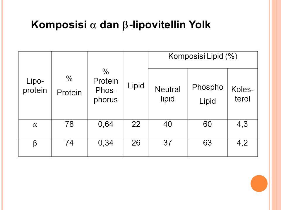 Lipo- protein % Protein % Protein Phos- phorus Lipid Komposisi Lipid (%) Neutral lipid Phospho Lipid Koles- terol  780,642240604,3  740,342637634,2