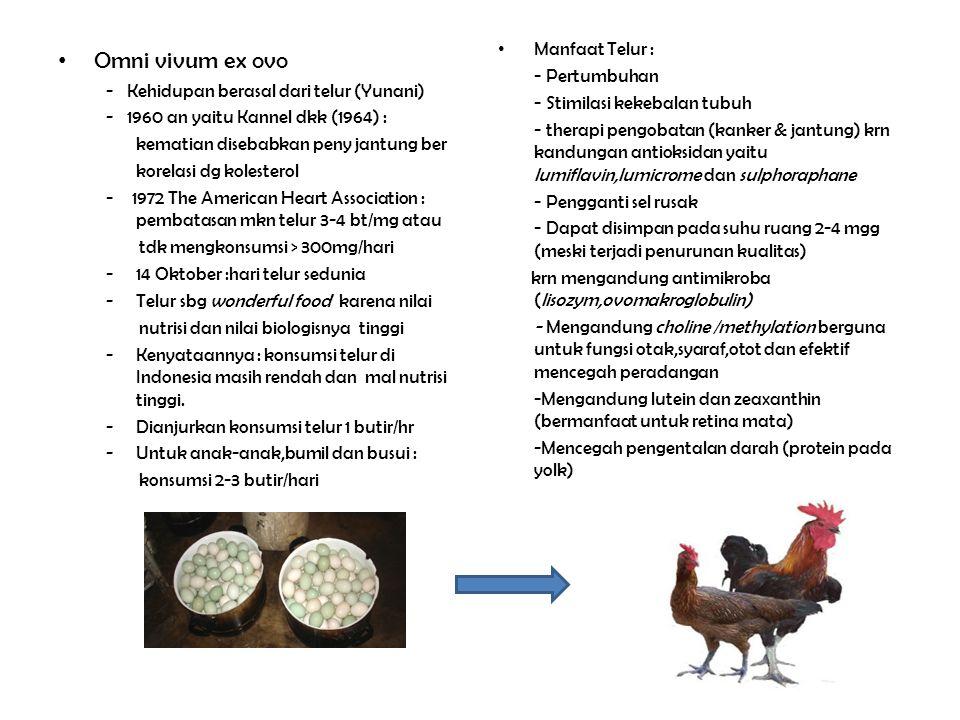 Omni vivum ex ovo - Kehidupan berasal dari telur (Yunani) - 1960 an yaitu Kannel dkk (1964) : kematian disebabkan peny jantung ber korelasi dg koleste