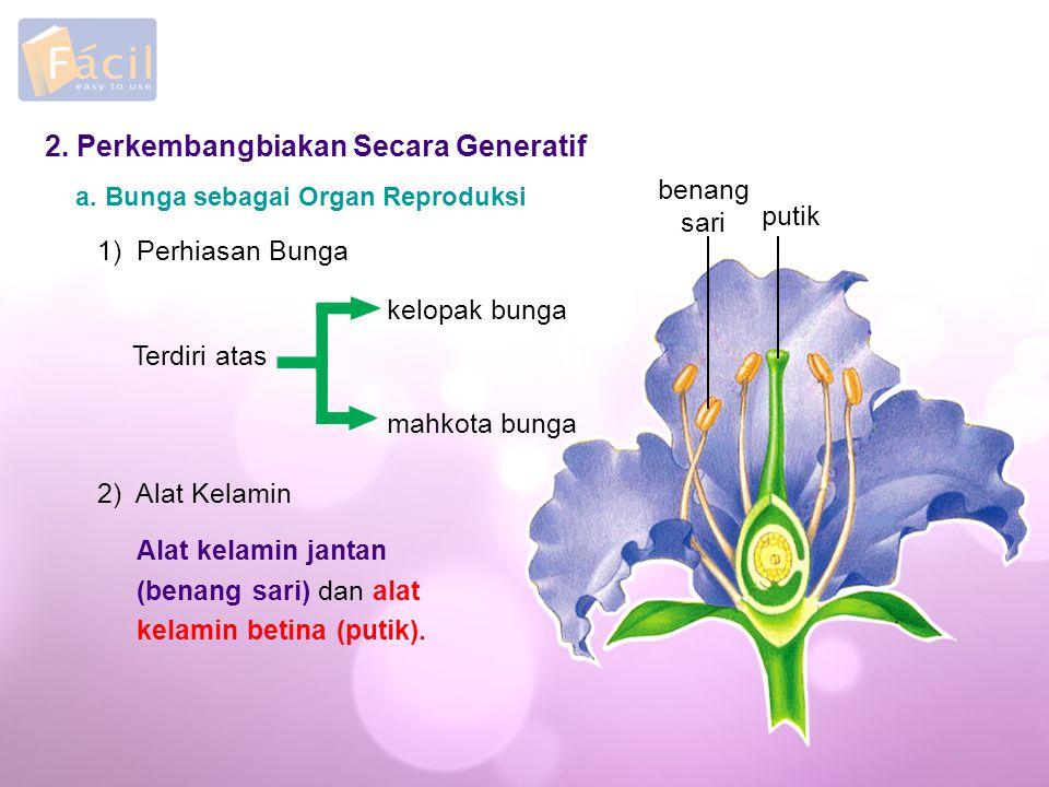 2.Perkembangbiakan Secara Generatif a.