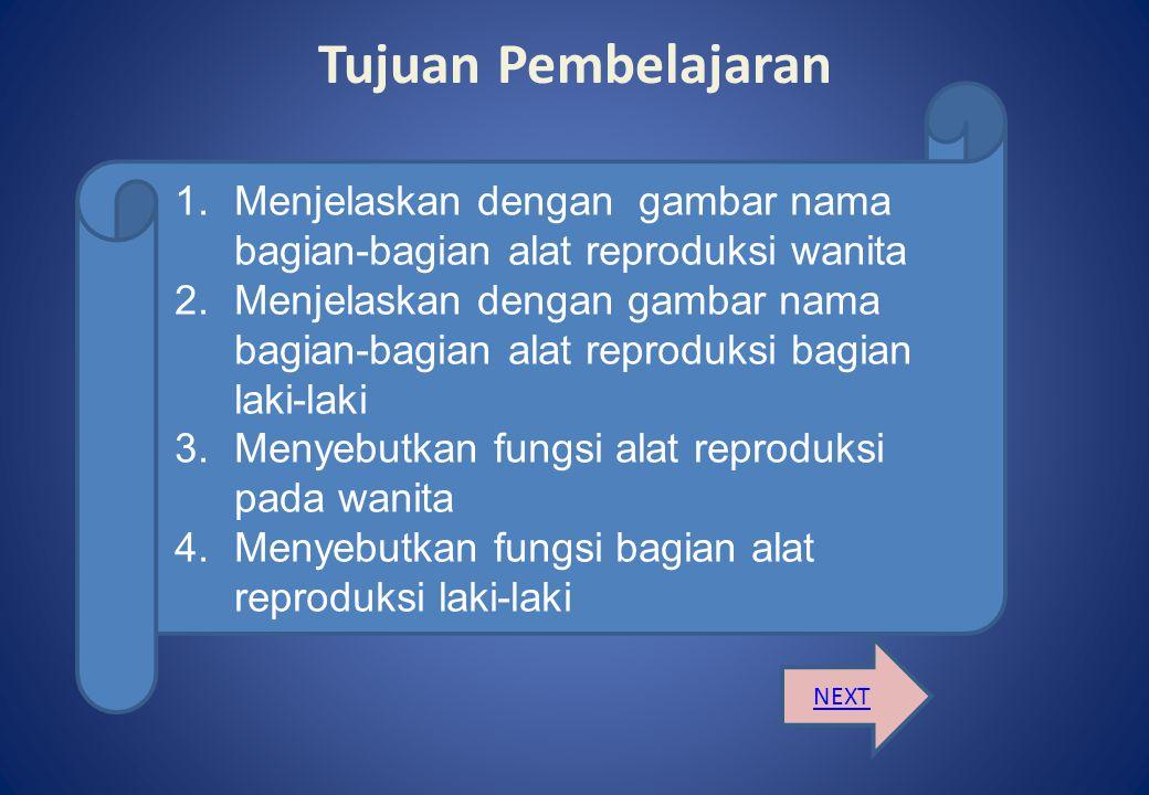 Tujuan Pembelajaran NEXT 1.Menjelaskan dengan gambar nama bagian-bagian alat reproduksi wanita 2.Menjelaskan dengan gambar nama bagian-bagian alat reproduksi bagian laki-laki 3.Menyebutkan fungsi alat reproduksi pada wanita 4.Menyebutkan fungsi bagian alat reproduksi laki-laki