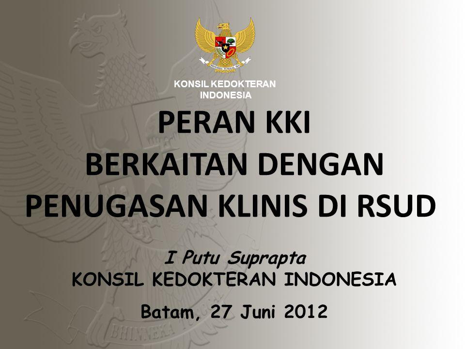 12 PROGRESS Konsil Kedokteran Indonesia