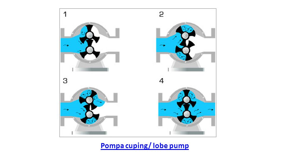 Pompa cuping/ lobe pump