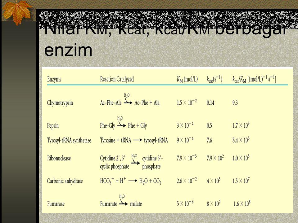 Nilai K M, k cat, k cat /K M berbagai enzim