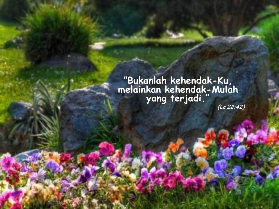 Bukanlah kehendak-Ku, melainkan kehendak-Mulah yang terjadi. (Lc 22:42)