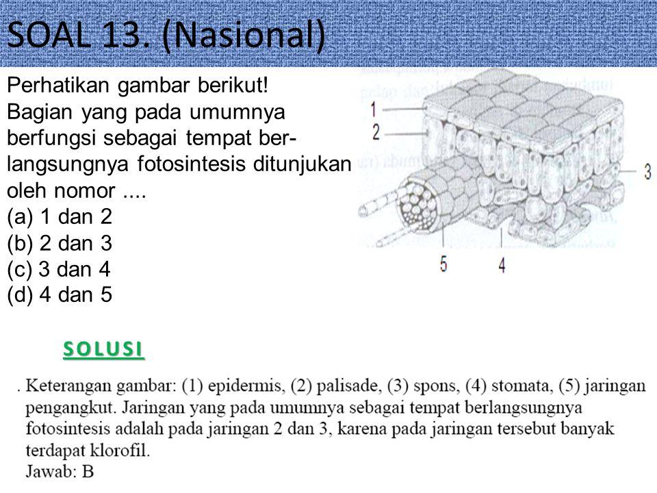 SOAL 13.(Nasional)SOLUSI Perhatikan gambar berikut.