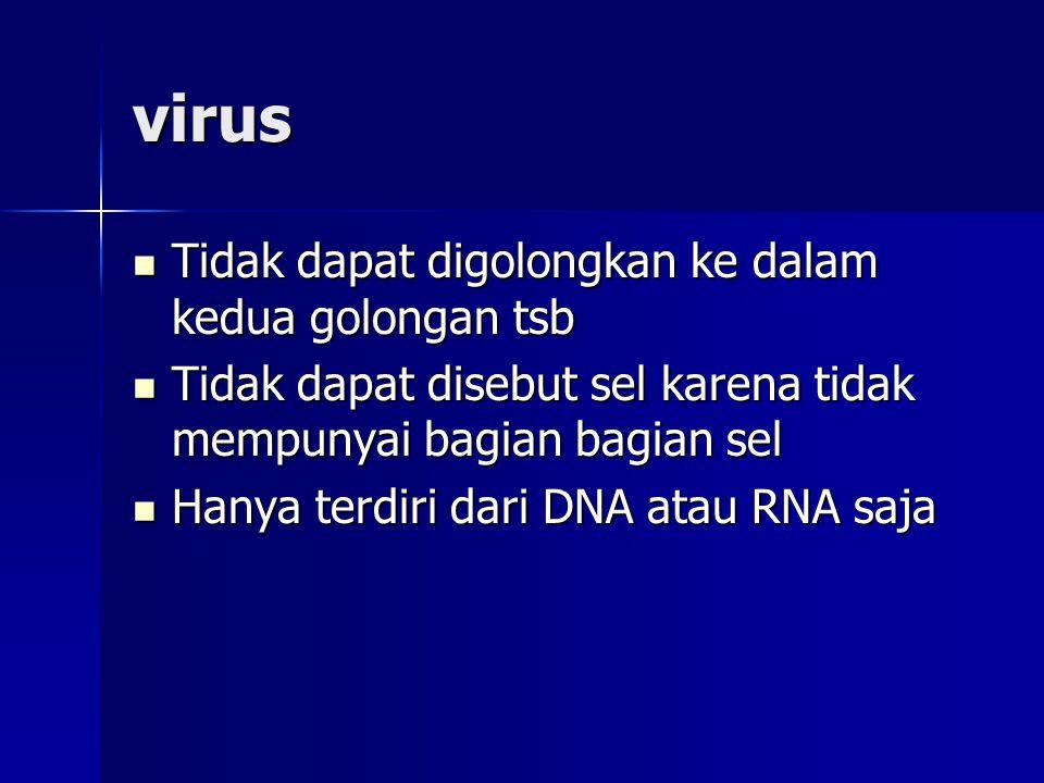 virus Tidak dapat digolongkan ke dalam kedua golongan tsb Tidak dapat digolongkan ke dalam kedua golongan tsb Tidak dapat disebut sel karena tidak mem