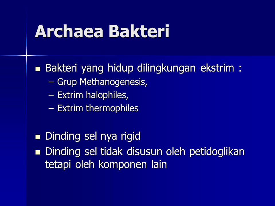 Archaea Bakteri Bakteri yang hidup dilingkungan ekstrim : Bakteri yang hidup dilingkungan ekstrim : –Grup Methanogenesis, –Extrim halophiles, –Extrim