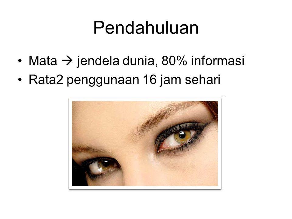Pendahuluan Mata  jendela dunia, 80% informasi Rata2 penggunaan 16 jam sehari