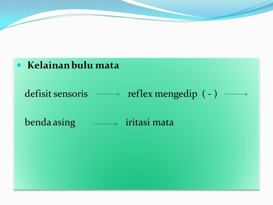 Kelainan bulu mata defisit sensoris reflex mengedip ( - ) benda asing iritasi mata Kelainan bulu mata defisit sensoris reflex mengedip ( - ) benda asi