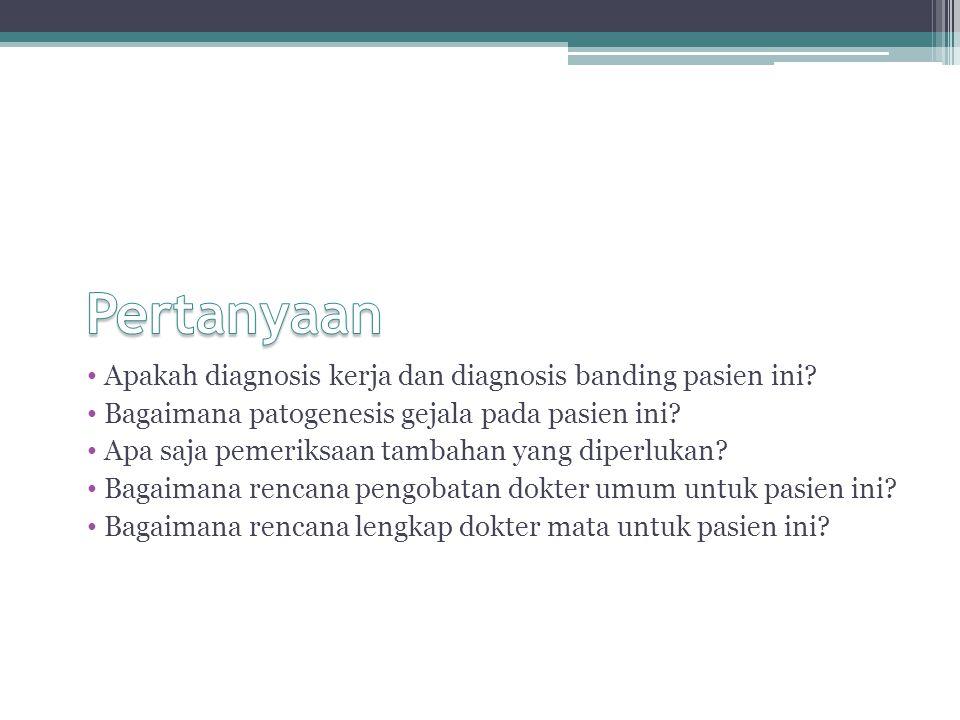 Apakah diagnosis kerja dan diagnosis banding pasien ini? Bagaimana patogenesis gejala pada pasien ini? Apa saja pemeriksaan tambahan yang diperlukan?