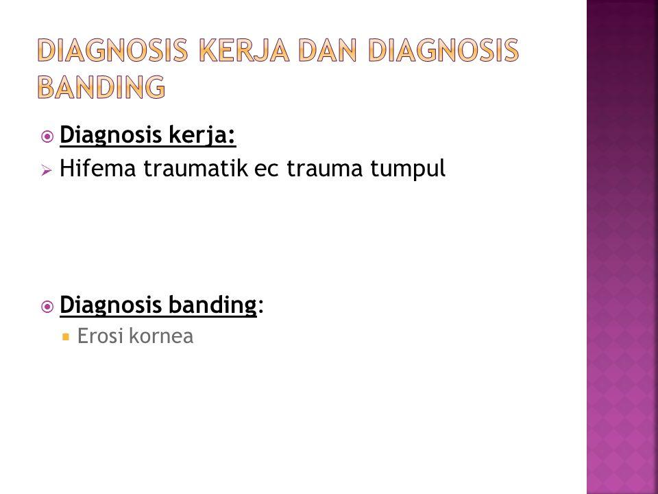 Diagnosis kerja:  Hifema traumatik ec trauma tumpul  Diagnosis banding:  Erosi kornea