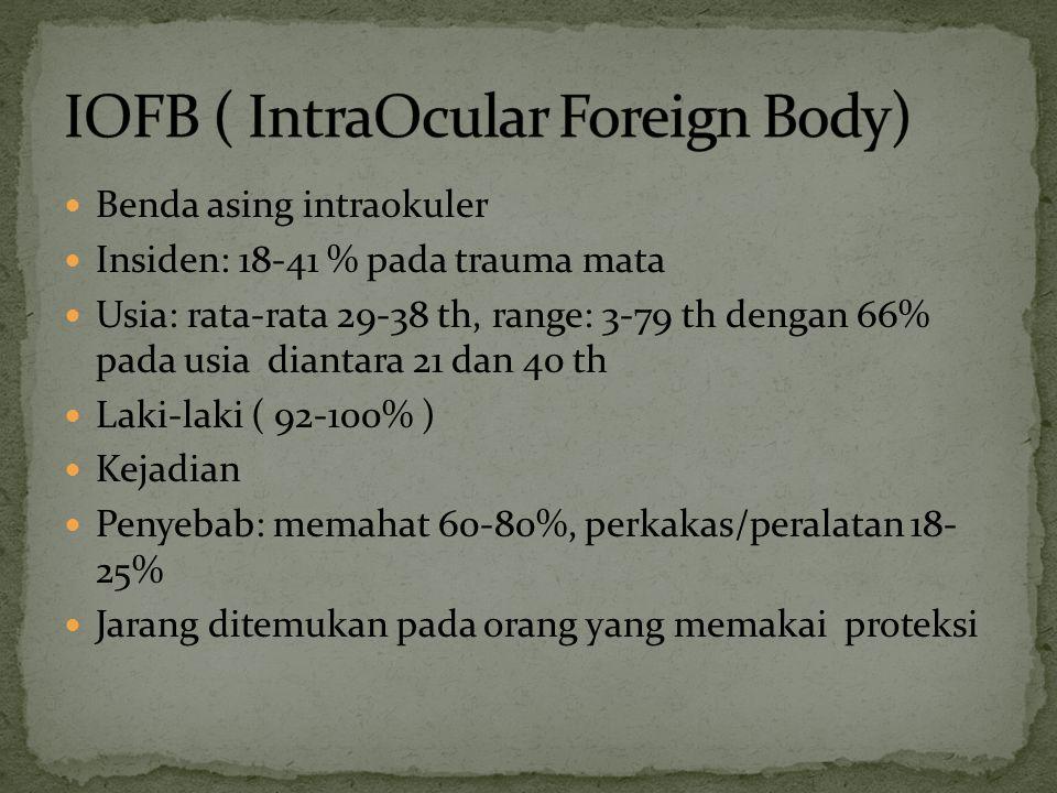 Benda asing intraokuler Insiden: 18-41 % pada trauma mata Usia: rata-rata 29-38 th, range: 3-79 th dengan 66% pada usia diantara 21 dan 40 th Laki-lak