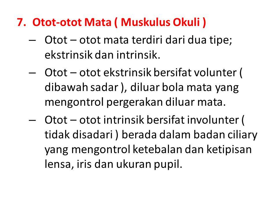 7.Otot-otot Mata ( Muskulus Okuli ) – Otot – otot mata terdiri dari dua tipe; ekstrinsik dan intrinsik. – Otot – otot ekstrinsik bersifat volunter ( d