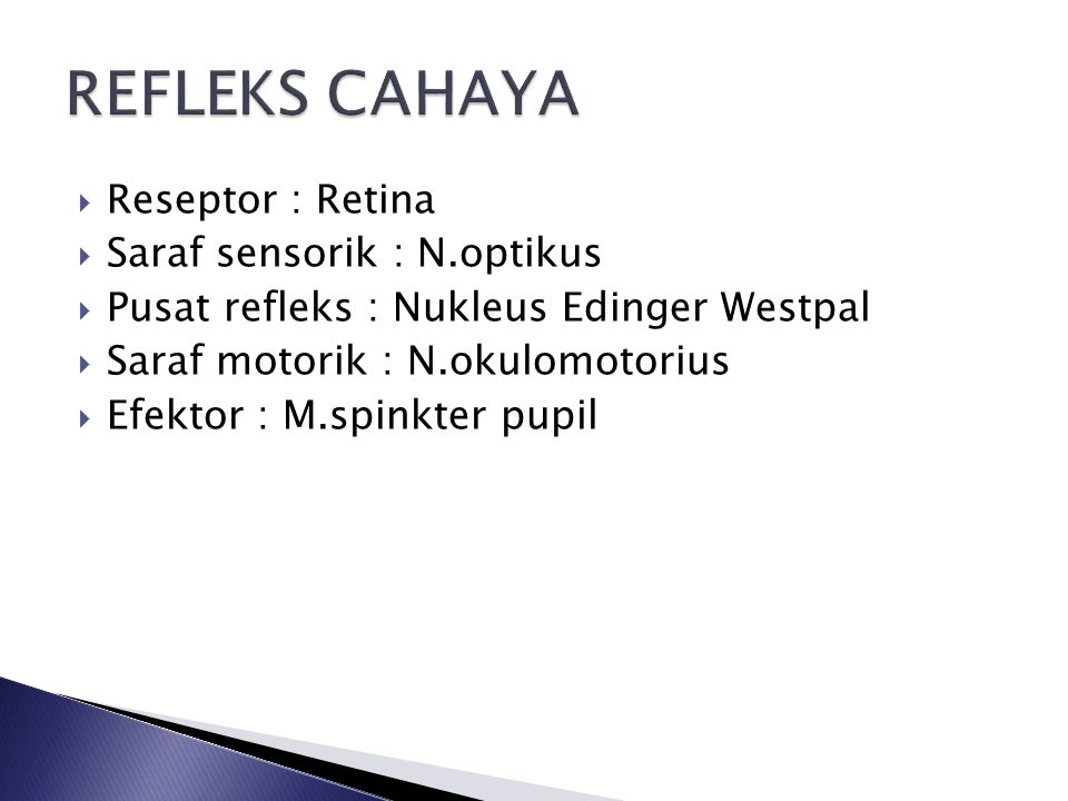 Reseptor : Retina  Saraf sensorik : N.optikus  Pusat refleks : Nukleus Edinger Westpal  Saraf motorik : N.okulomotorius  Efektor : M.spinkter pupil