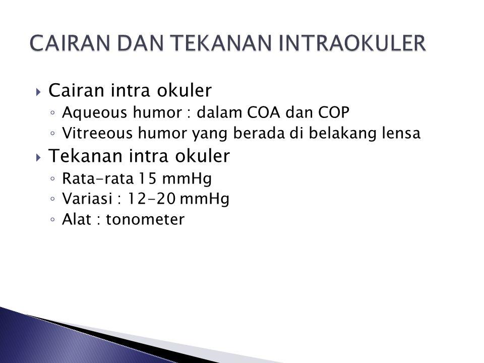  Cairan intra okuler ◦ Aqueous humor : dalam COA dan COP ◦ Vitreeous humor yang berada di belakang lensa  Tekanan intra okuler ◦ Rata-rata 15 mmHg ◦ Variasi : 12-20 mmHg ◦ Alat : tonometer