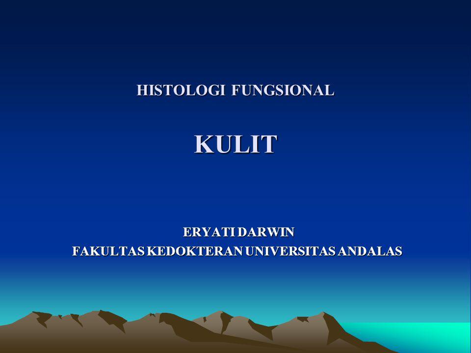 HISTOLOGI FUNGSIONAL KULIT ERYATI DARWIN ERYATI DARWIN FAKULTAS KEDOKTERAN UNIVERSITAS ANDALAS