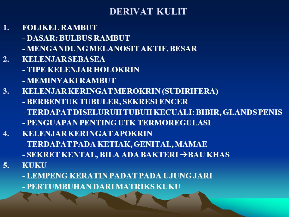DERIVAT KULIT 1.FOLIKEL RAMBUT - DASAR: BULBUS RAMBUT - MENGANDUNG MELANOSIT AKTIF, BESAR 2.KELENJAR SEBASEA - TIPE KELENJAR HOLOKRIN - MEMINYAKI RAMBUT 3.KELENJAR KERINGAT MEROKRIN (SUDIRIFERA) - BERBENTUK TUBULER, SEKRESI ENCER - TERDAPAT DISELURUH TUBUH KECUALI: BIBIR, GLANDS PENIS - PENGUAPAN PENTING UTK TERMOREGULASI 4.KELENJAR KERINGAT APOKRIN - TERDAPAT PADA KETIAK, GENITAL, MAMAE - SEKRET KENTAL, BILA ADA BAKTERI  BAU KHAS 5.KUKU - LEMPENG KERATIN PADAT PADA UJUNG JARI - PERTUMBUHAN DARI MATRIKS KUKU