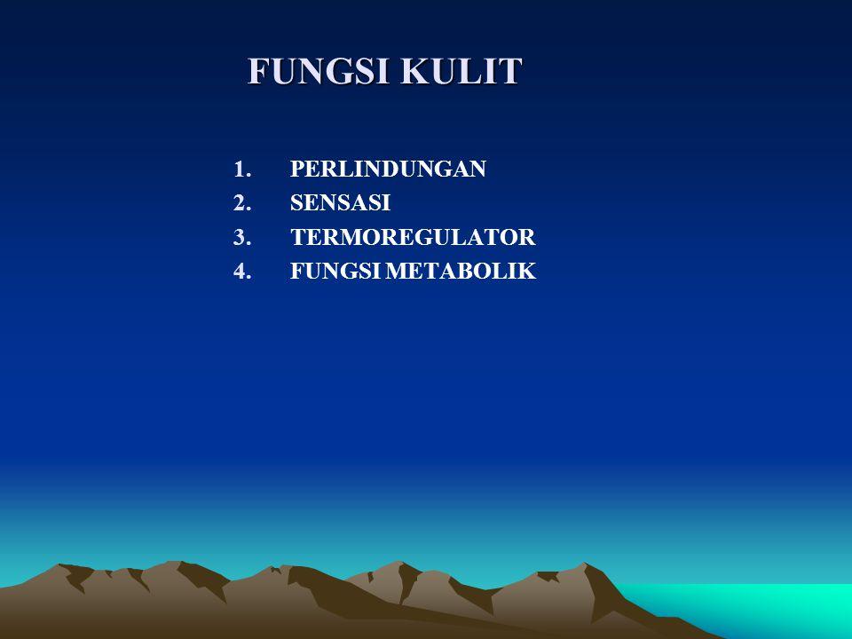 FUNGSI KULIT 1.PERLINDUNGAN 2.SENSASI 3.TERMOREGULATOR 4.FUNGSI METABOLIK