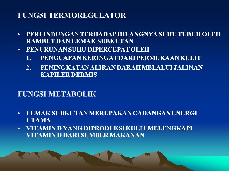 GAMBARAN HISTOLOGIS KULIT 1.EPIDERMIS –EPITEL BERLAPIS GEPENG BERTANDUK (TIPIS / TEBAL) –AVASKULER –PADA TELAPAK :TEBAL –PADA UJUNG JARI MEMILIKI POLA UNIK : SIDIK JARI –TERDIRI DARI LAPISAN-LAPISAN : 1.STRATUM GERMINATIVUM / BASALE 2.STARTUM SPINOSUM  AWAL SINTESA KERATIN 3.STARTUM GRANULOSUM  AWAL PERTANDUKAN 4.STRATUM LUCIDUM (PD KULIT TIPIS -) 5.STRATUM CORNEUM  PROTEIN FIBROSA (KERATIN)