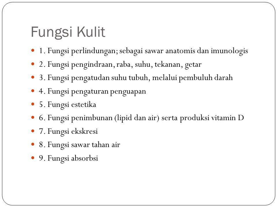 Fungsi Kulit 1. Fungsi perlindungan; sebagai sawar anatomis dan imunologis 2. Fungsi pengindraan, raba, suhu, tekanan, getar 3. Fungsi pengatudan suhu