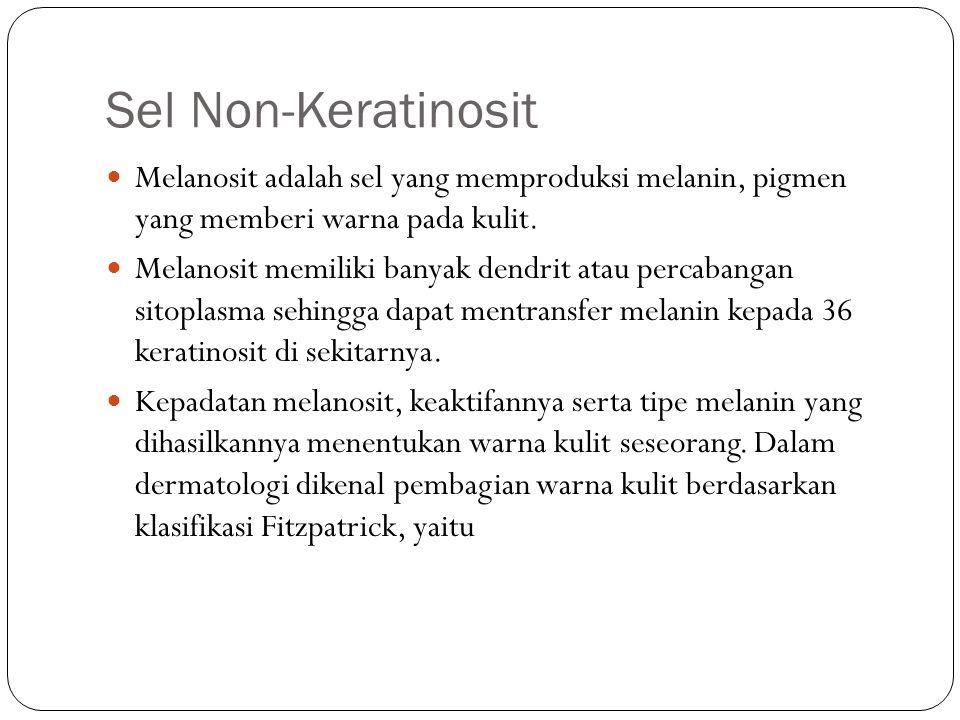 Sel Non-Keratinosit Melanosit adalah sel yang memproduksi melanin, pigmen yang memberi warna pada kulit. Melanosit memiliki banyak dendrit atau percab
