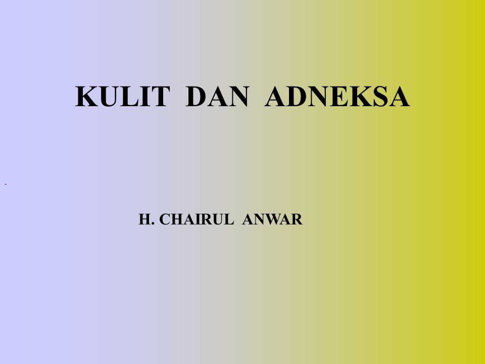 KULIT DAN ADNEKSA H. CHAIRUL ANWAR