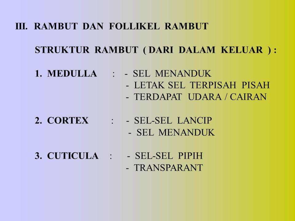 III. RAMBUT DAN FOLLIKEL RAMBUT STRUKTUR RAMBUT ( DARI DALAM KELUAR ) : 1. MEDULLA : - SEL MENANDUK - LETAK SEL TERPISAH PISAH - TERDAPAT UDARA / CAIR