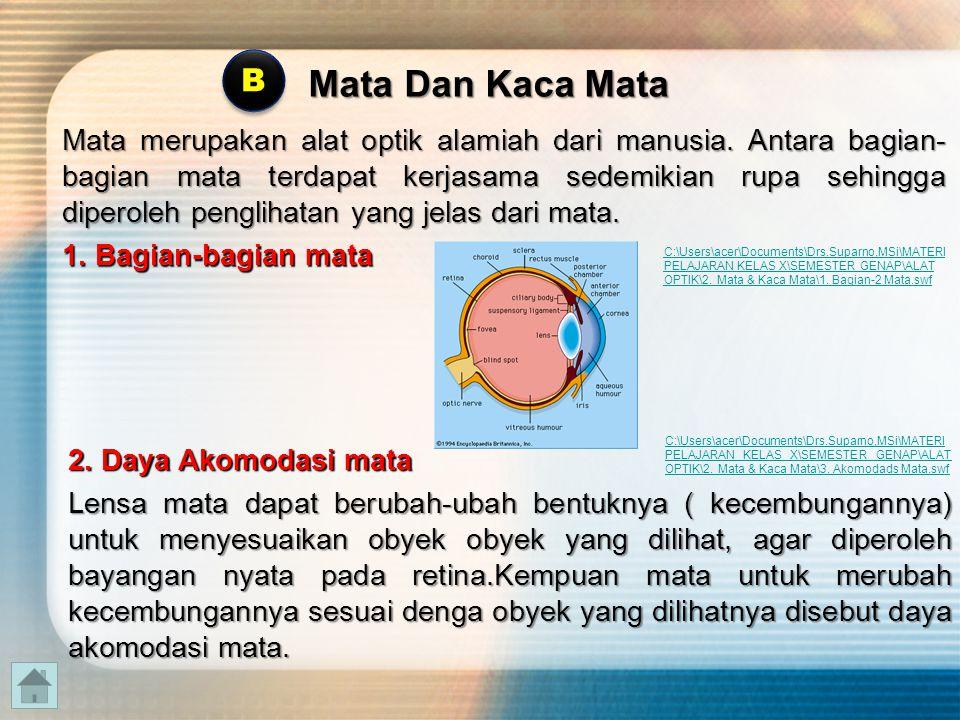 Mata disebut normal apabila lensa mata mampu menyesuaikan kecembungannya terhadap obyek yang dilihatnya.