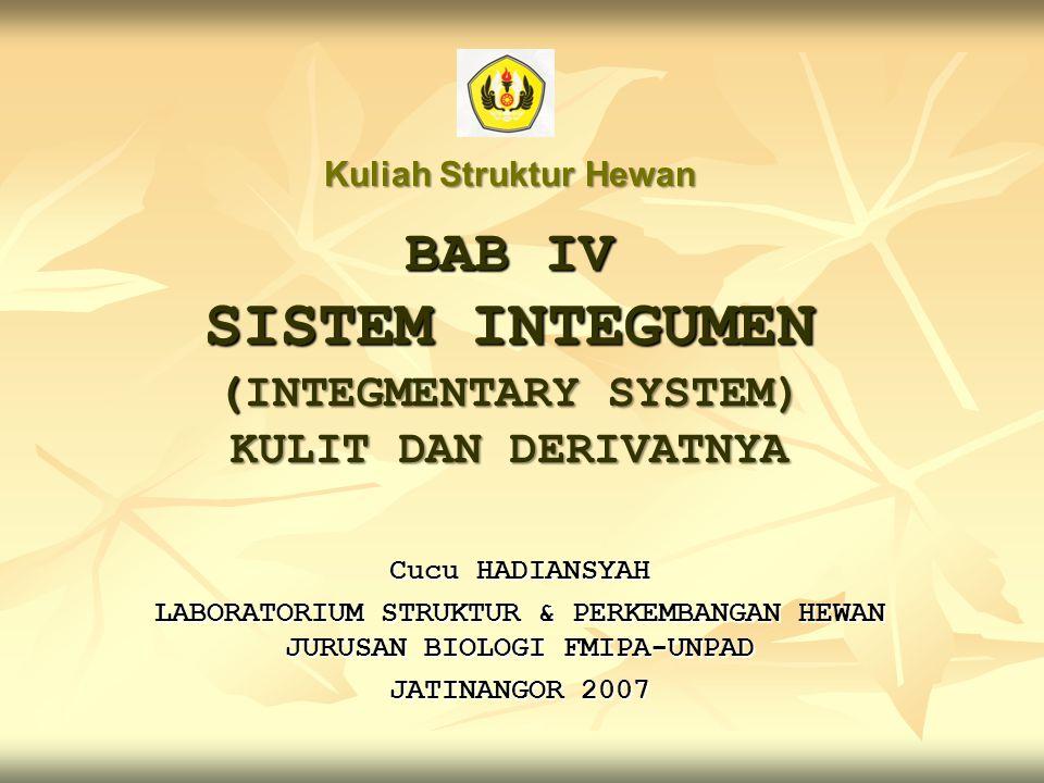 BAB IV SISTEM INTEGUMEN (INTEGMENTARY SYSTEM) KULIT DAN DERIVATNYA Cucu HADIANSYAH LABORATORIUM STRUKTUR & PERKEMBANGAN HEWAN JURUSAN BIOLOGI FMIPA-UN