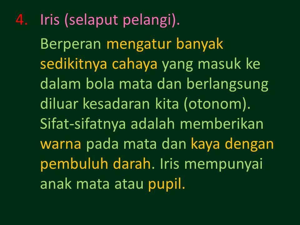 4.Iris (selaput pelangi).