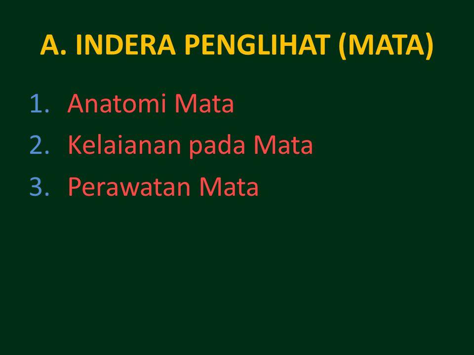 A. INDERA PENGLIHAT (MATA) 1.Anatomi Mata 2.Kelaianan pada Mata 3.Perawatan Mata