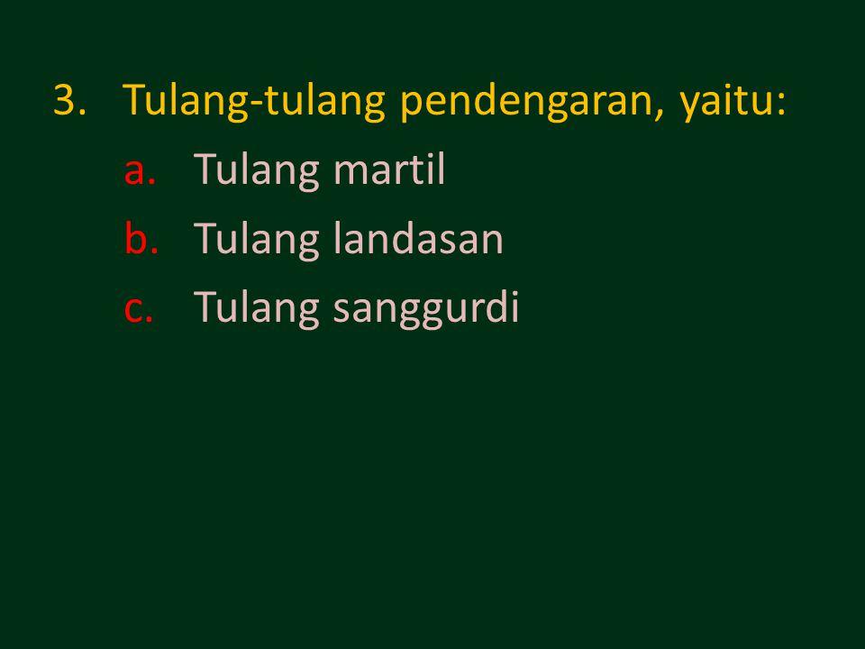 3.Tulang-tulang pendengaran, yaitu: a.Tulang martil b.Tulang landasan c.Tulang sanggurdi