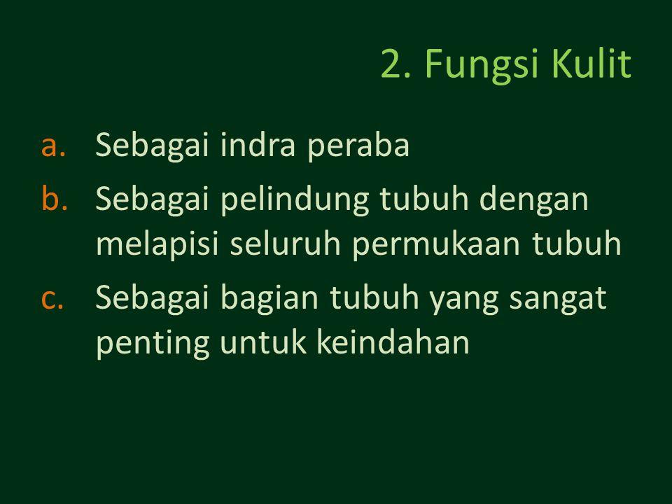 2. Fungsi Kulit a.Sebagai indra peraba b.Sebagai pelindung tubuh dengan melapisi seluruh permukaan tubuh c.Sebagai bagian tubuh yang sangat penting un