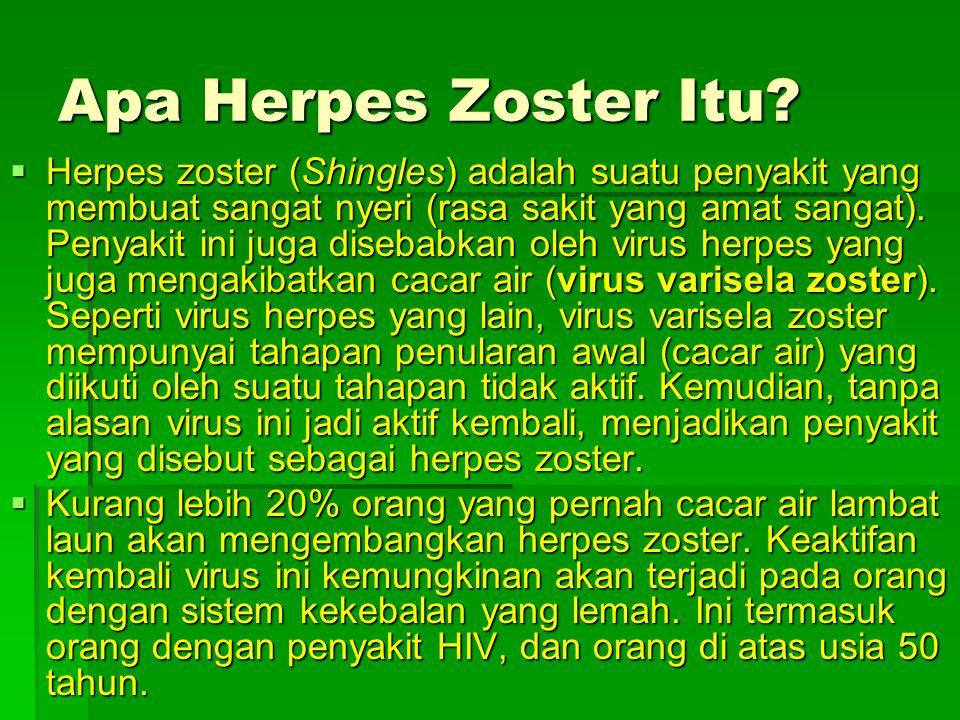  Herpes zoster hidup dalam jaringan saraf.