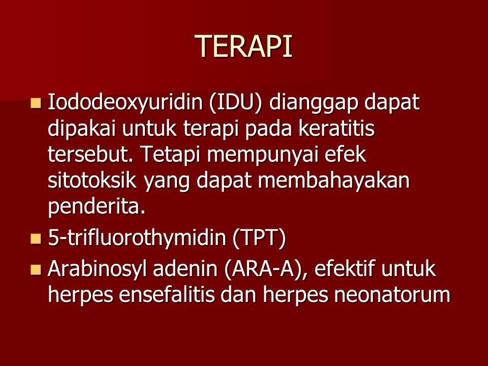 TERAPI Iododeoxyuridin (IDU) dianggap dapat dipakai untuk terapi pada keratitis tersebut. Tetapi mempunyai efek sitotoksik yang dapat membahayakan pen