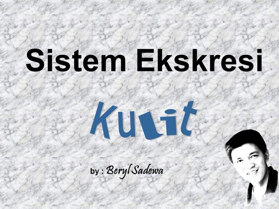 Sistem Ekskresi by : Beryl Sadewa