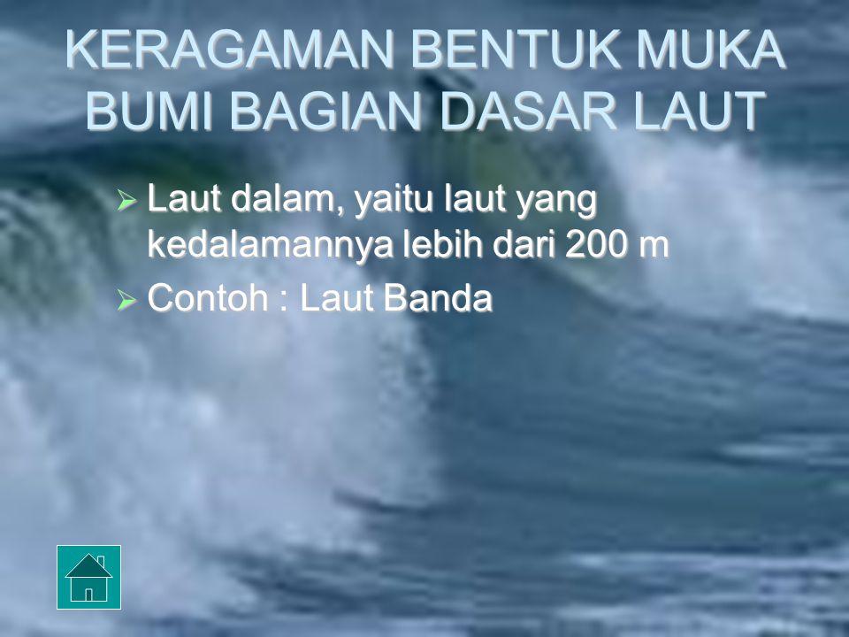KERAGAMAN BENTUK MUKA BUMI BAGIAN DASAR LAUT Laut dangkal, yaitu laut yang kedalamannya tidak lebih dari 200 m, dasar laut dangkal disebut pula dengan