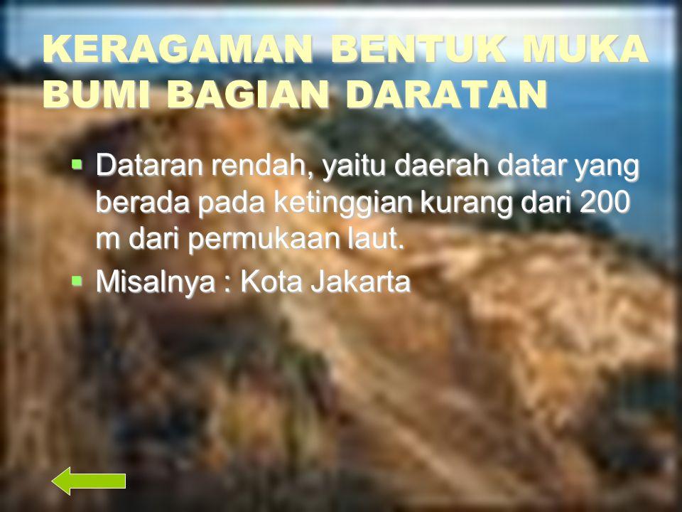 KERAGAMAN BENTUK MUKA BUMI BAGIAN DARATAN  Pegunungan, yaitu rangkaian dari beberapa gunung, bentuknya memanjang  Contoh : Pegunungan Bukit Barisan